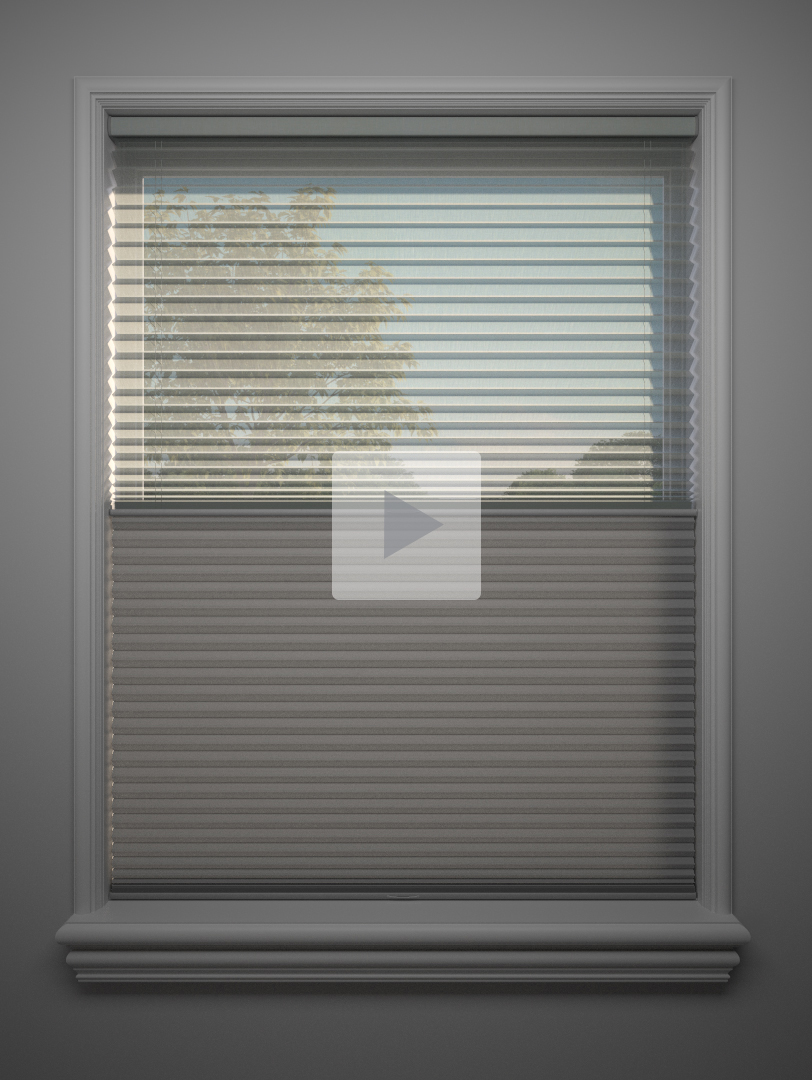 Dualview_Honeycomb_Shades_jpg