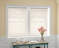 "Classic 1"" Pleated Shades"