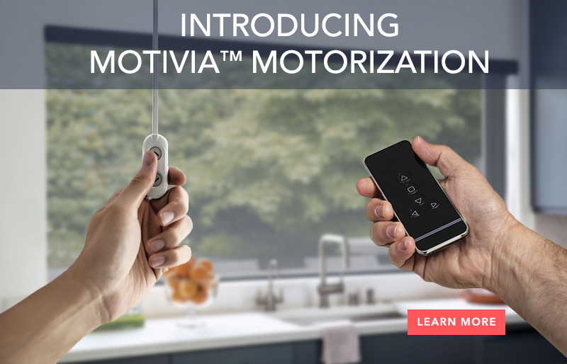 Introducing Motivia Motorization