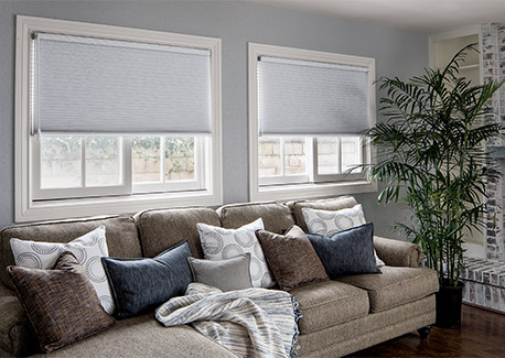 Honeycomb shades for the family room